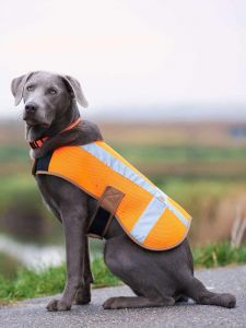Carhartt P000342 Hond Safety Vest